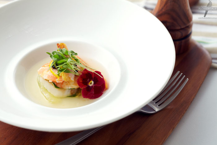 Prawn, Scallop and Citrus Escabeche with Microgreen and Edible Flower Salad